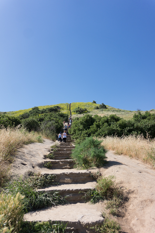culver city stairs review, trisha therese, three thousand miles blog-4
