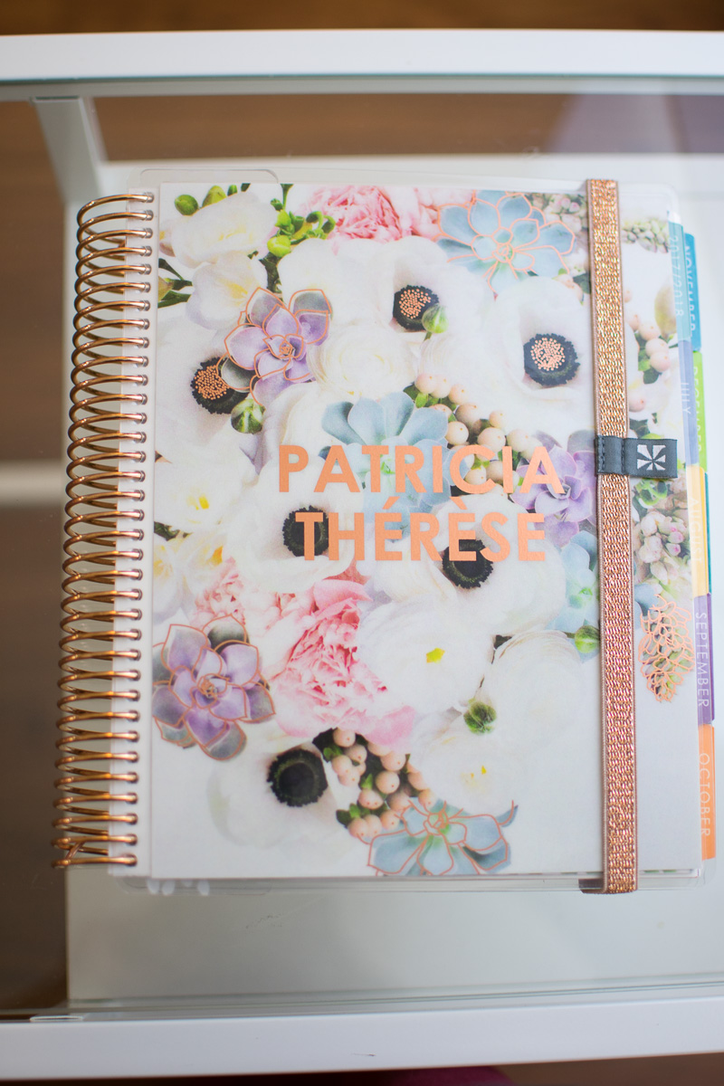 erin condren life planner 2017-2018 review, three thousand miles blog, organization in medical school, Erin Condren life planner medical school, medical school organization